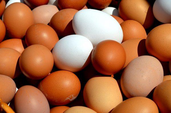 Egg Myths