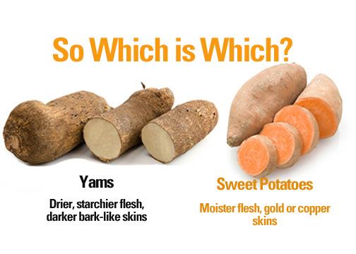 Yam vs Sweet Potato