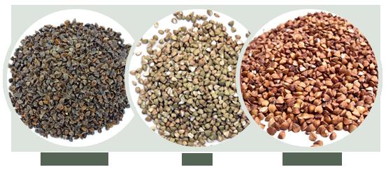 Buckwheat Forms