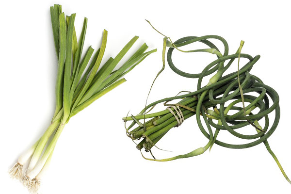 Green Garlic vs Garlic Scapes