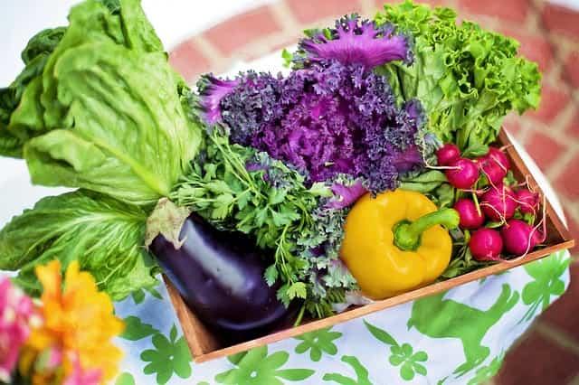 vegetables-790022_640-min